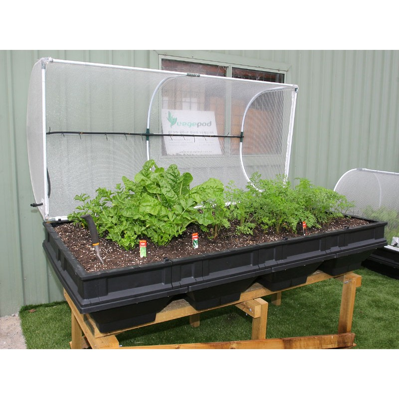 Vegepod Large With Cover Enfield Produce