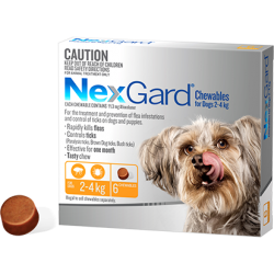 NexGard Flea And Tick Chews For Very Small Dog 2-4kg
