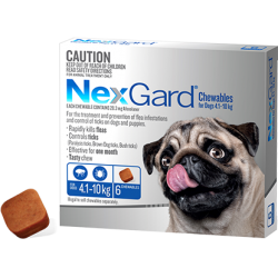 NexGard Flea And Tick Chews For Small Dog 4.1-10kg