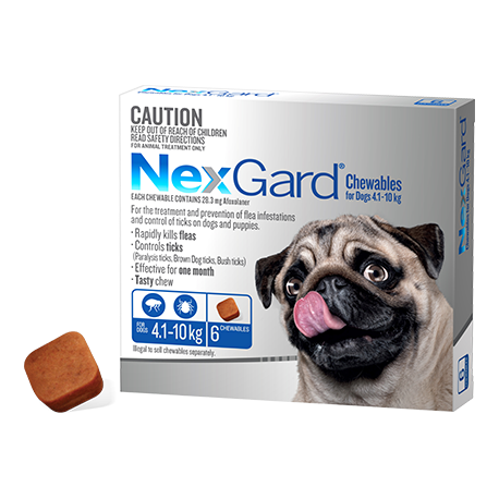 Nex-Gard Flea And Tick Chews For Small Dog 4.1-10kg