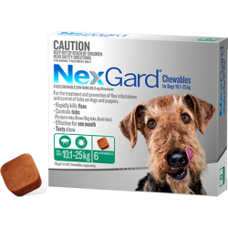 NexGard Flea And Tick Chews For Medium Dog 10.1-25kg