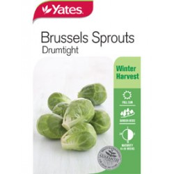 Yates Brussels Sprout Seeds – Drumtight