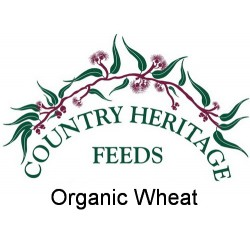 Organic Wheat Grain 25kg
