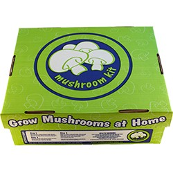 Mushroom Grow Kits - White Button