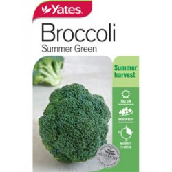 Yates Broccoli Seeds - Select Variety