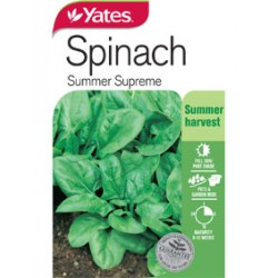 Yates Spinach Seeds - Select Variety