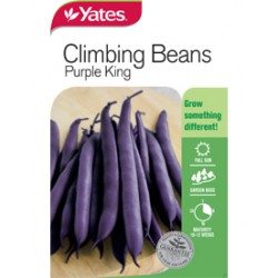 Yates Climbing Beans (Spring Lines)
