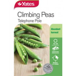 Yates Snow Peas (Climbing - All Year Round)