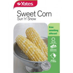 Yates Early Chief Sweet Corn (Spring Lines)