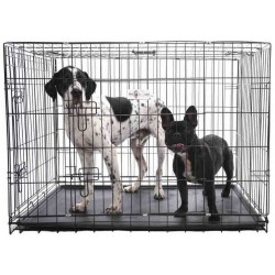 Premium Durable 2 Door Dog Crates