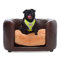 PetObsessed Chocolate Indulgence PVC Leather Dog Sofa