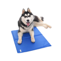 PetObsessed Ice Cooling PVC Dog Cushion