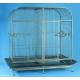 Bird Cage 0887