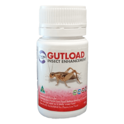 Pisces Gutload Insect Enhancement 40g