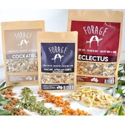 Forage Gourmet Bird Seed SMALL PARROT MIX