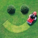 Lawn General Care