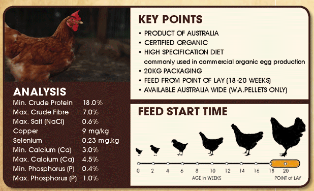 Organic Free Range Layer Mash: Analysis, Key Points, Feed Start Time
