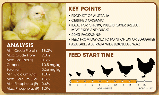 Organic Chick Starter Mash: Main Features, Analysis, Feed Start Time